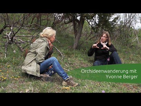 Orchideenwanderung mit Yvonne Berger