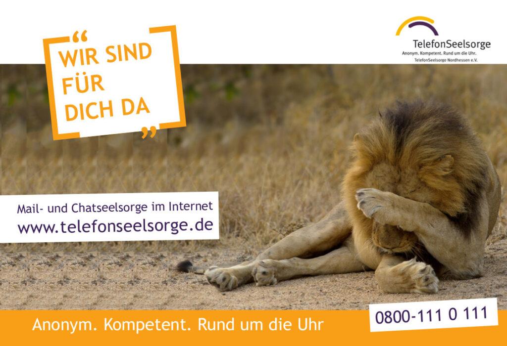 Logo Löwe Wir sind für dich da Telefonseelsorge Nordhessen